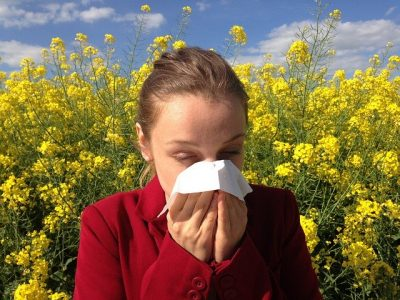 What Helps With Allergies? Hoffmann Brothers