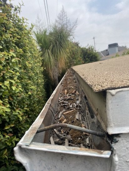 Clean Roof Gutters - Hoffmann Brothers