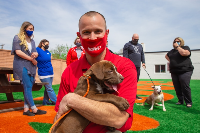 Chris Hoffmann - Stray Rescue Promotion